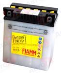 FIAMM 7904447