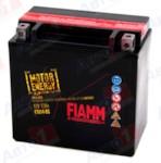 FIAMM 7904489