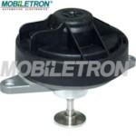 MOBILETRON EV-EU027